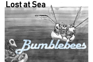 Lost At Sea & Bumblebees